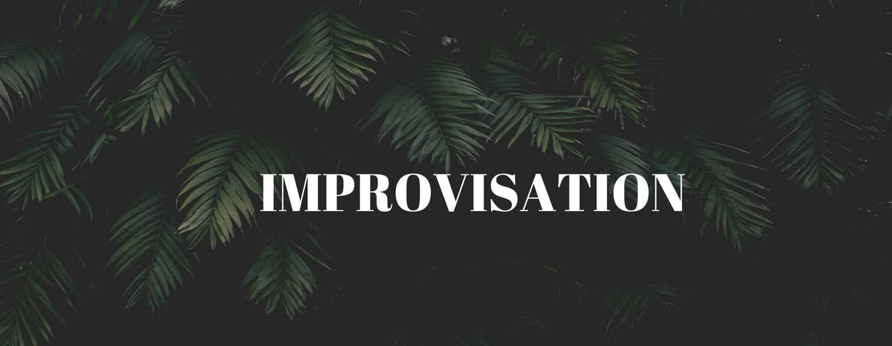 TEAM BUILDING théâtre d'improvisation (2)